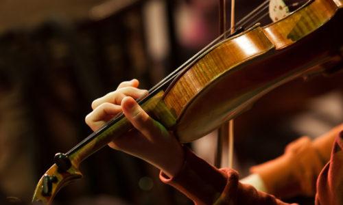 Rotorua Civic Arts Trust – Dr Barry Smith Memorial Instrumental Scholarship Application